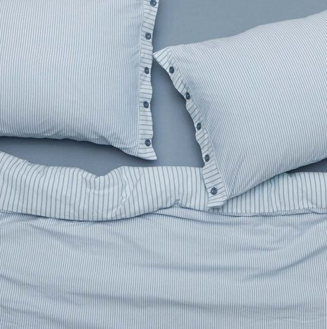 Goldy Double Sheet Set – Blue